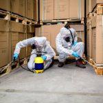 Prețuri promoționale la serviciile de dezinsecție furnizate de Pest Control